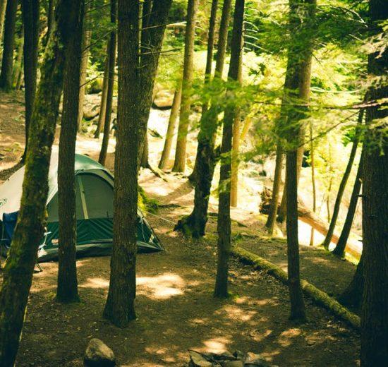 Leukste sportieve campings in Frankrijk